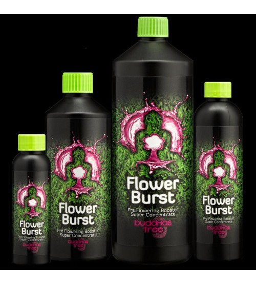 Flower Burst 100ml