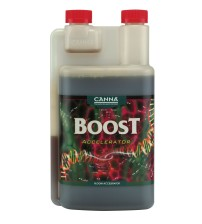 CANNABOOST Accelerator 1Ltr