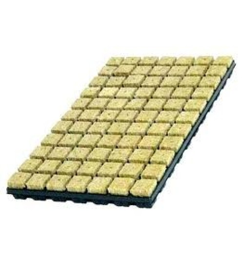 Rockwool SBS 77 Tray Propogation Cubes