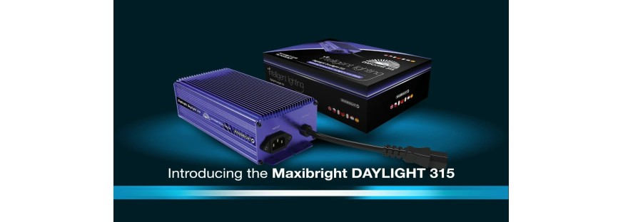 Maxibright Daylight 315