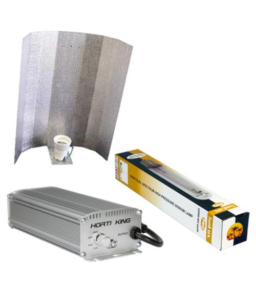 10x HortiKing Digital 600watt Kits