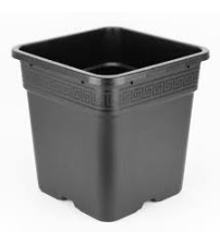 6Ltr Square Pot